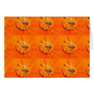 honeybees on orange card
