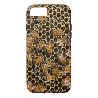 Honeycomb and Bees iPhone 8/7 Case