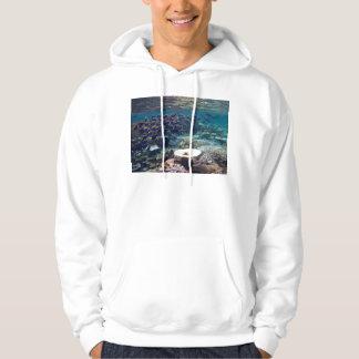 Hooded Sweatshirt - Powder Blue Surgeon Fish