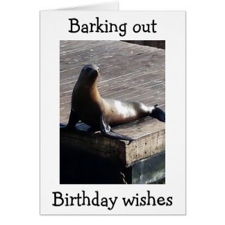 HOPING FOR SEAL OF APPROVAL ON BIRTHDAY BARK CARDS