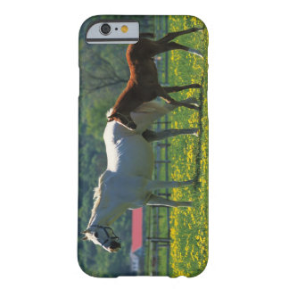 Horse and her foal standing in a field barely there iPhone 6 case