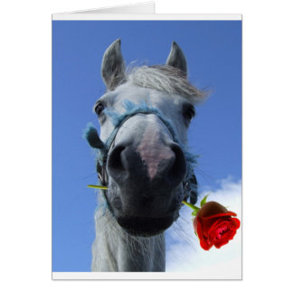 horse and rose love theme card
