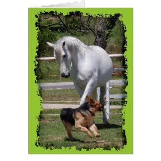 HORSE & DOG PLAY CARD