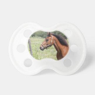 Horse Dummy