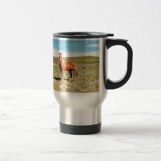 Horse in front of a Napa Vineyard Travel Mug