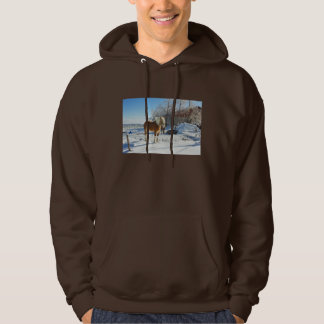 Horse On Maine Farm After Snow And Ice Storm Hoodie