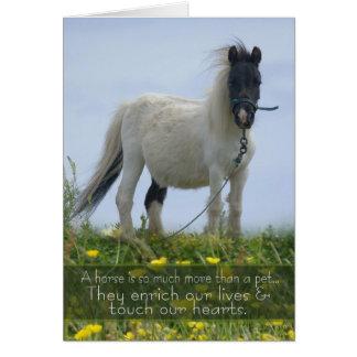 Horse Pet Sympathy Card - Equine Sympathy - Pit Po