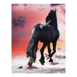 Horse running free 21.5 cm x 28 cm flyer