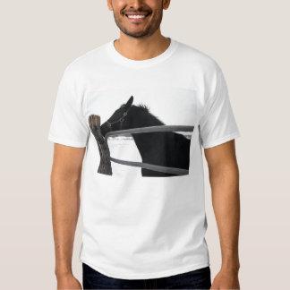 Horse whisperer shirts