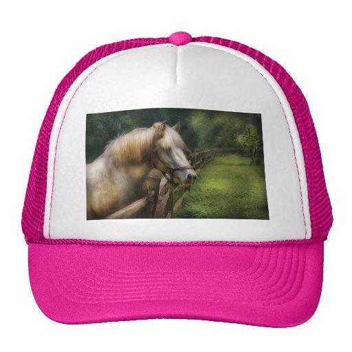 Horse - White Stallion Mesh Hats