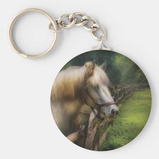 Horse - White Stallion Key Chains