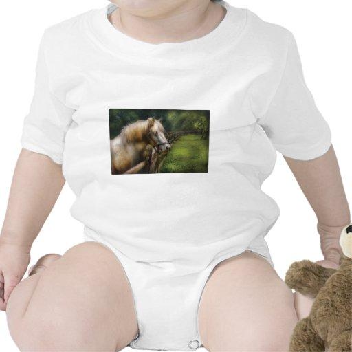 Horse - White Stallion T-shirts