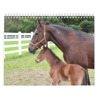 Horses Calendars