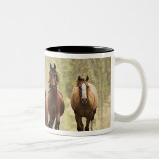 Horses cresting small hill during roundup, 2 Two-Tone mug