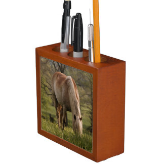 Horses grazing in meadow, Cades Cove, Great 3 Pencil/Pen Holder