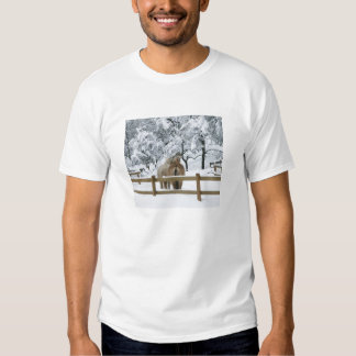 horses in snow t shirt