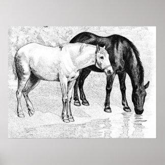 horses,pencil drawn poster