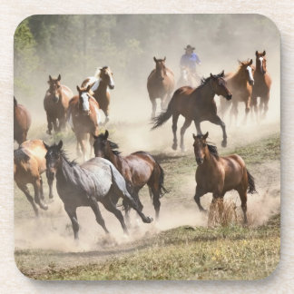 Horses running during roundup, Montana Coaster