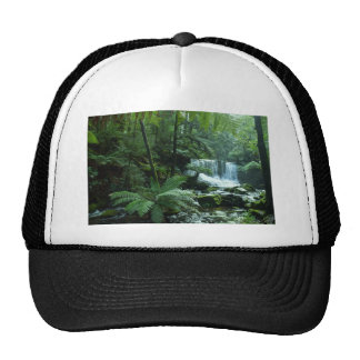 HORSESHOE FALLS TASMANIA AUSTRALIA CAP