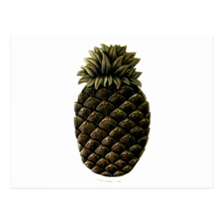 Hospitality Pineapple 2 The MUSEUM Zazzle Gifts Postcards