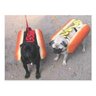 Hot dogs postcards