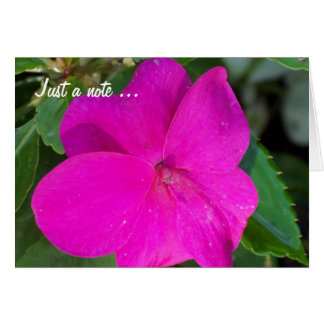 Hot Pink Flower, Just a note ... Card