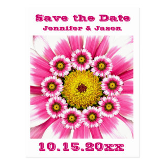 Hot Pink Fuchsia Gerbera Daisies Wedding Set Postcard