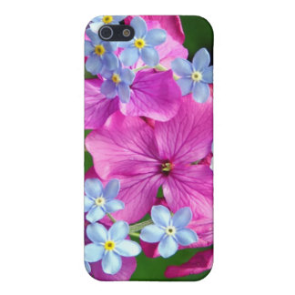 Hot Spring iPhone 5/5S Cases