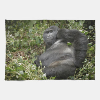 huge silverback mountain gorilla tea towel