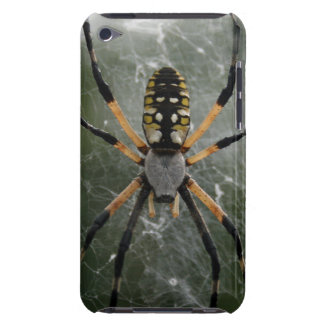 Huge Spider / Yellow & Black Argiope Case-Mate iPod Touch Case