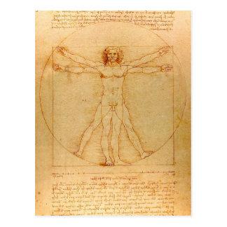 Human Anatomy, Vitruvian Man by Leonardo da Vinci Postcard