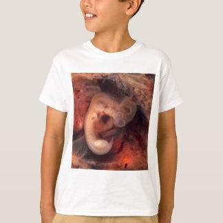 Human Embryo 7th Week of Pregnancy 5th Peek P.O. T-Shirt