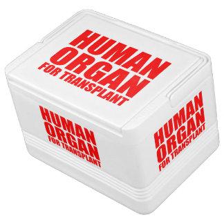 HUMAN ORGAN FOR TRANSPLANT CHILLY BIN