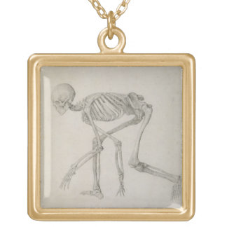 Human Skeleton: Lateral view in Crouching Posture, Square Pendant Necklace