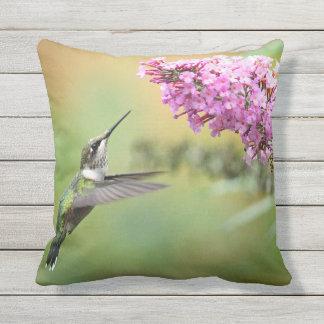 Hummingbird 5053 outdoor cushion