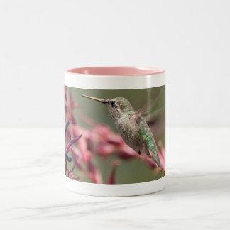 Hummingbird at Huntington Library Two-Tone Coffee Mug