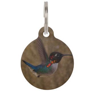 Hummingbird in Flight Pet ID Tag