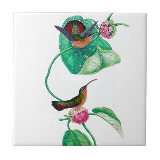 Hummingbird Love Tile