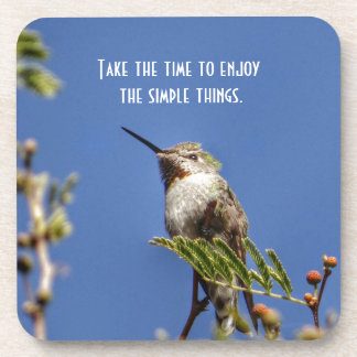 Hummingbird on Branch by SnapDaddy Coasters
