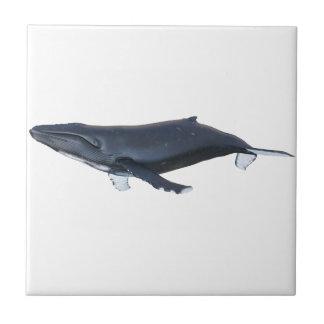 Humpback Whale in Profile Small Square Tile