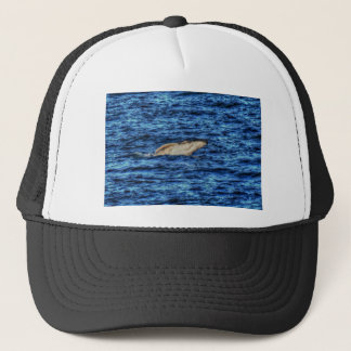 HUMPBACK WHALE QUEENSLAND AUSTRALIA ART EFFECTS TRUCKER HAT