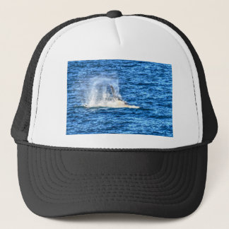 HUMPBACK  WHALE QUEENSLAND AUSTRALIA TRUCKER HAT