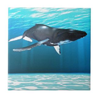 Humpback Whale Swimming Small Square Tile