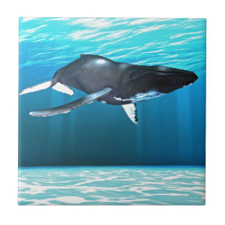 Humpback Whale Swimming Tile