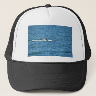 HUMPBACK WHALE TAIL MACKAY QUEENSLAND AUSTRALIA TRUCKER HAT