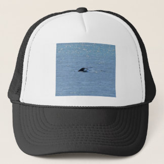 HUMPBACK WHALE TAIL QUEENSLAND AUSTRALIA TRUCKER HAT