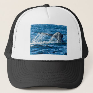Humpback Whale Washington State Trucker Hat