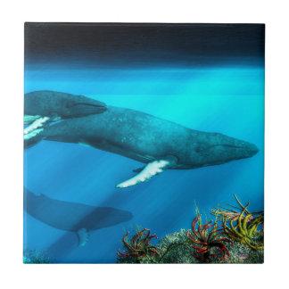 Humpback Whales Tile