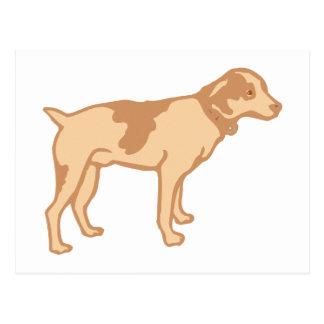 Hund dog postkarten