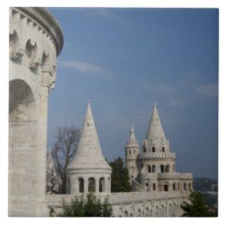 Hungary, capital city of Budapest. Buda, Castle Tile